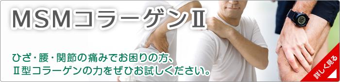 msm_banner