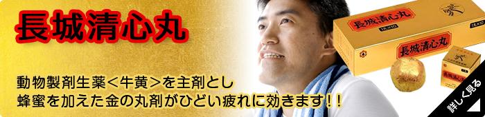 seishinmaru_banner