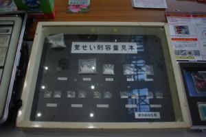 IMGP6341